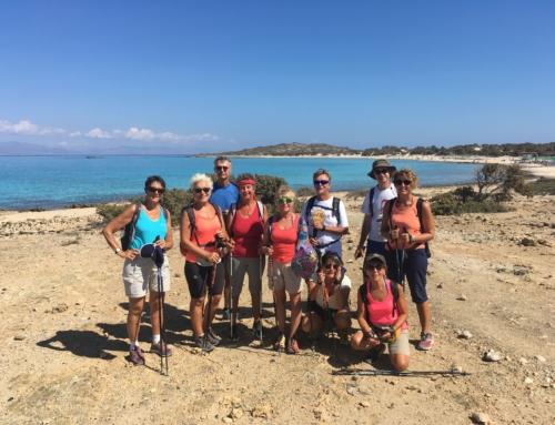 Creta Est 2018
