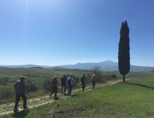 Val d'Orcia – marzo 2019